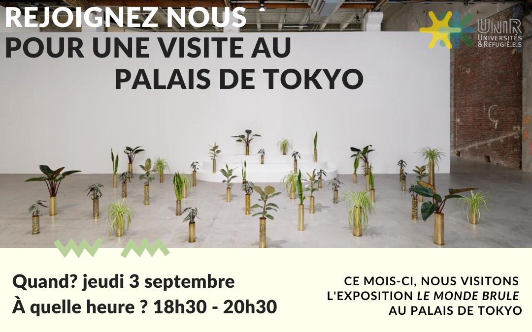 Visite Palais de Tokyo 3 Septembre