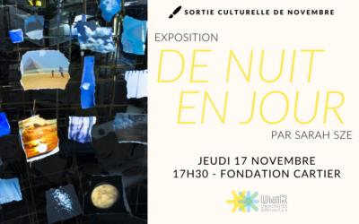 Visite Fondation Cartier 17 novembre ANNULÉE